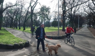 Neighbourly-Ride-Carlton-North-Fitzroy_Edinburgh-Gardens_Shaggy-dog_28Jul2019