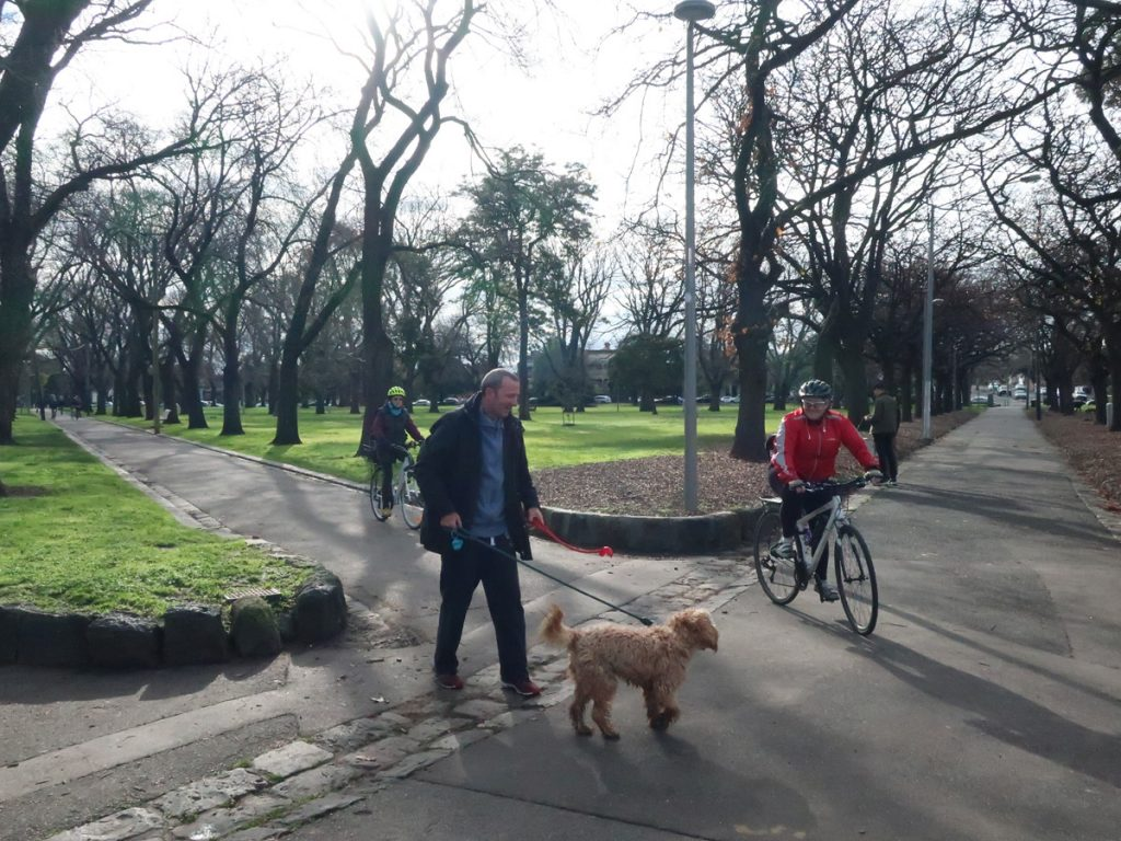 Edinburgh Gardens with shaggy dog
